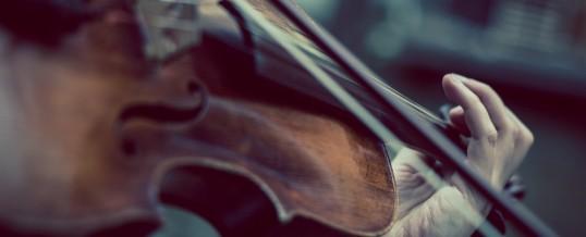 Concert de violon au Parc des Loges